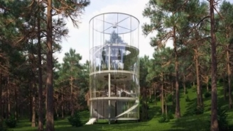 Meet The Glass-Enclosed Treehouse That Every Nature Enthusiast Will Envy