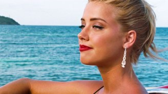 Amber Heard Pleads Guilty To Smuggling Two Ferocious Fur Balls Into Australia