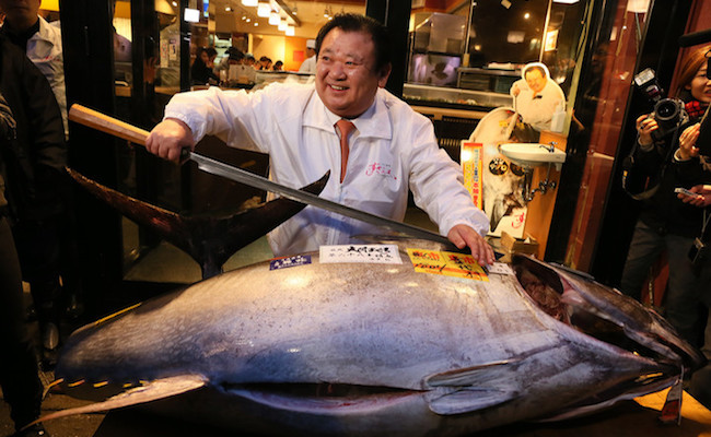 bluefin-tuna-getty
