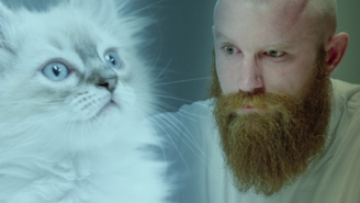 This Is The Best Cat Vs. Thug Staring Contest You Will See All Day