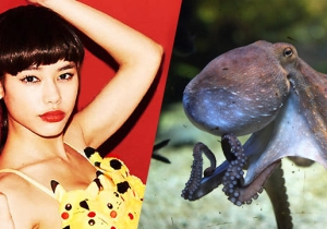 From A Fugitive Octopus To A Pokemon Bra, Here's Your Guide To This Week's Weirdest
