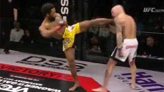 Watch This Devastating Head Kick Ragdoll A Fighter Against The Cage