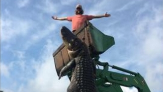 This Monster Alligator Hunters Caught In Florida Will Make You Stay On Dry Land Forever