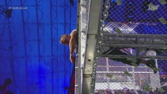 A WWE Hall Of Famer Called Shane McMahon A 'Fool' For His Insane WrestleMania Jump