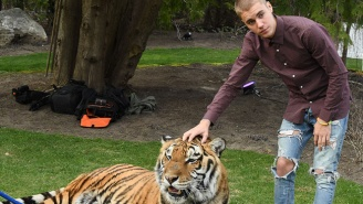 PETA Has A Problem With Justin Bieber And His Chained Tiger Pictures