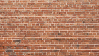 This Brick Wall Optical Illusion Will Freak You Right The Hell Out