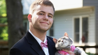 The Internet Is Having A Field Day Photoshopping This Kid's Prom Photos With His Cat