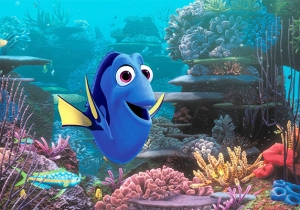 Marine Biologists Worry 'Finding Dory' Will Lead To Endangering The Species