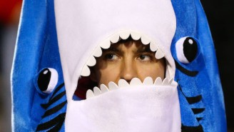 Just In Time For Summer, Experts Say This Is The Year Shark Attacks Will Increase