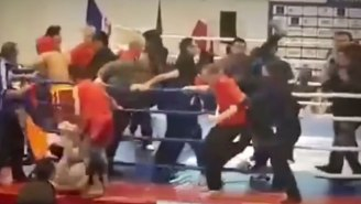 Watch A Huge Brawl Break Out At A Children's Kung Fu Tournament In Ukraine