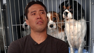 This Man Is Putting His Own Life In Danger To Save Dogs From Being Eaten