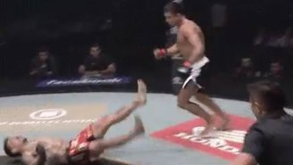Soccer Kicks Are Simply Too Brutal And Dangerous In MMA, And Here's Proof