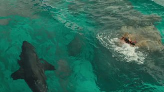 Blake Lively Outwits A Giant Shark In Trailer For 'The Shallows'