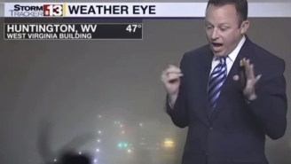 Watch This Weatherman Lose His Mind When A Spider Invades His Screen