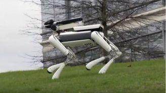 Watch Google's Adorable New Robot Slip On A Banana Peel