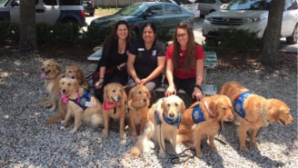 Comfort Dogs Have Arrived From Across The Country To Help The Orlando Victims Heal