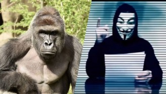 'Anonymous Ohio' Demands An Investigation Of The Mom In The Cincinnati Zoo Controversy