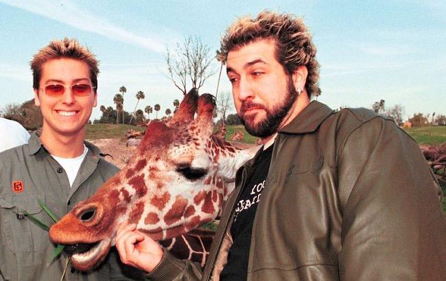joey fatone giraffe