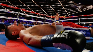 This Vasyl Lomachenko Combination Resulted In The Most Devastating Boxing Knockout Of The Year