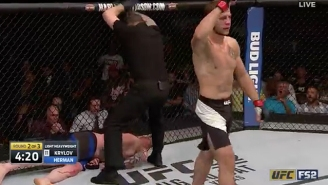 Nikita Krylov Employed A Violent Karate Kick To Shut Off Ed Herman's Consciousness