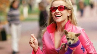 'Legally Blonde 3' Will Bend And Snap With The Original Film's Creative Team