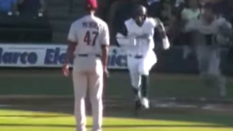 Things Got Ugly In A Hurry During This Bench-Clearing Brawl At A Minor League Game