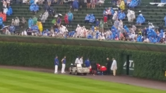 There Was A Horrifying Moment During A Cubs Rain Delay When A Fan Fell Out Of The Stands Onto The Field
