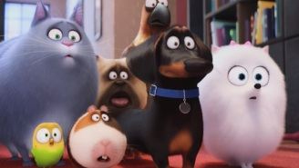Here's the deal with that WTF scene in 'Secret Life of Pets'