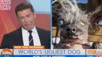 Karl Stefanovic Reigns Triumphant In The Best News Bloopers For The Month Of June