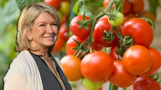 Martha Stewart Wants Millennials To 'Have The Initiative' And Grow A Tomato Plant