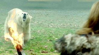 What's On Tonight: Someone Gets Fed To The Polar Bears On 'Zoo'