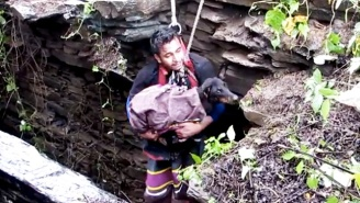 A Dog That Fell Down A Deep Well Actually Sobs When Rescuers Come To Save Her