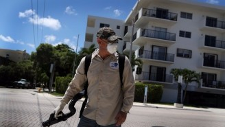 The Zika Virus Has Been Locally Transmitted Hundreds Of Miles Away From Miami