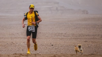 This Super Marathoner Is Trying To Adopt The Stray Dog That Ran Beside Him During A Race