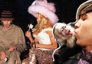 The Wildest Red Carpet Moments In VMA History