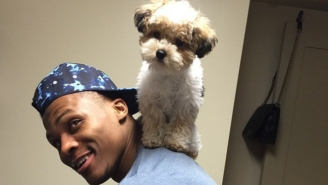 Russell Westbrook And His Impossibly Adorable Pup Won #NationalDogDay