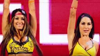 The Bella Twins Somehow Both Won 'Choice Female Athlete' At The Teen Choice Awards