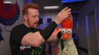WWE Nixed Plans To Have The Muppets Appear At SummerSlam, Because We Can't Have Nice Things