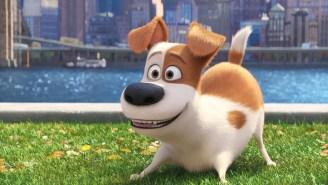 'Secret Life of Pets' sequel just got a release date