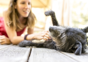Science Once Again Proves There's Nothing Dogs Love More Than Their Humans