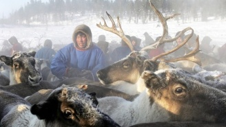 Siberia's Melting Permafrost Has Released A Deadly Anthrax Outbreak