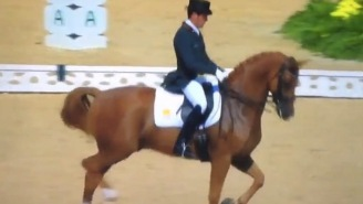 And Now, A Fancy Horse Dancing To Santana And Rob Thomas' 'Smooth' At The Rio Olympics