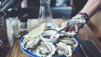 The Truth About Oysters — The Bivalve That Will Feed Us While Saving The Planet