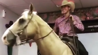 A Texas Man Decided To Ride His Horse Into Taco Bell
