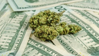 Oregon Has Collected An Enormous Amount Of Tax Revenue Since Legalizing Weed