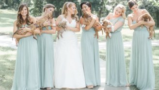 A Bridal Party Ditched The Flowers To Hold Rescue Dogs For A Good Cause