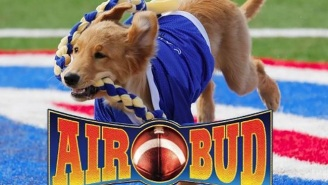 The Internet Can't Stop Lampooning Apple's iPhone 7 And Air Bud– Er, 'AirPods'
