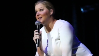 Amy Schumer Shuts Down A Perverted Heckler At Her Stand-Up Show In Sweden