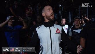 CM Punk Made A Cool $500K To Get Beaten Up By Mickey Gall At UFC 203