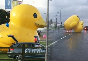 This Is What Happens When A Giant Inflatable Duck Escapes Its Shackles